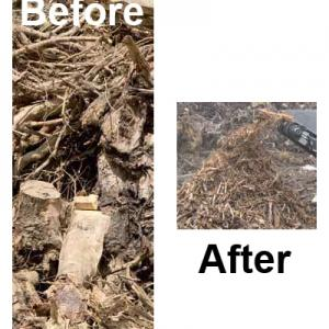 Root stocks/ forest wood residue